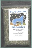 Buy Blue Coyote Organics Catnip at Herb Find