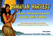 Hawaiian Harvest Herbal Incense